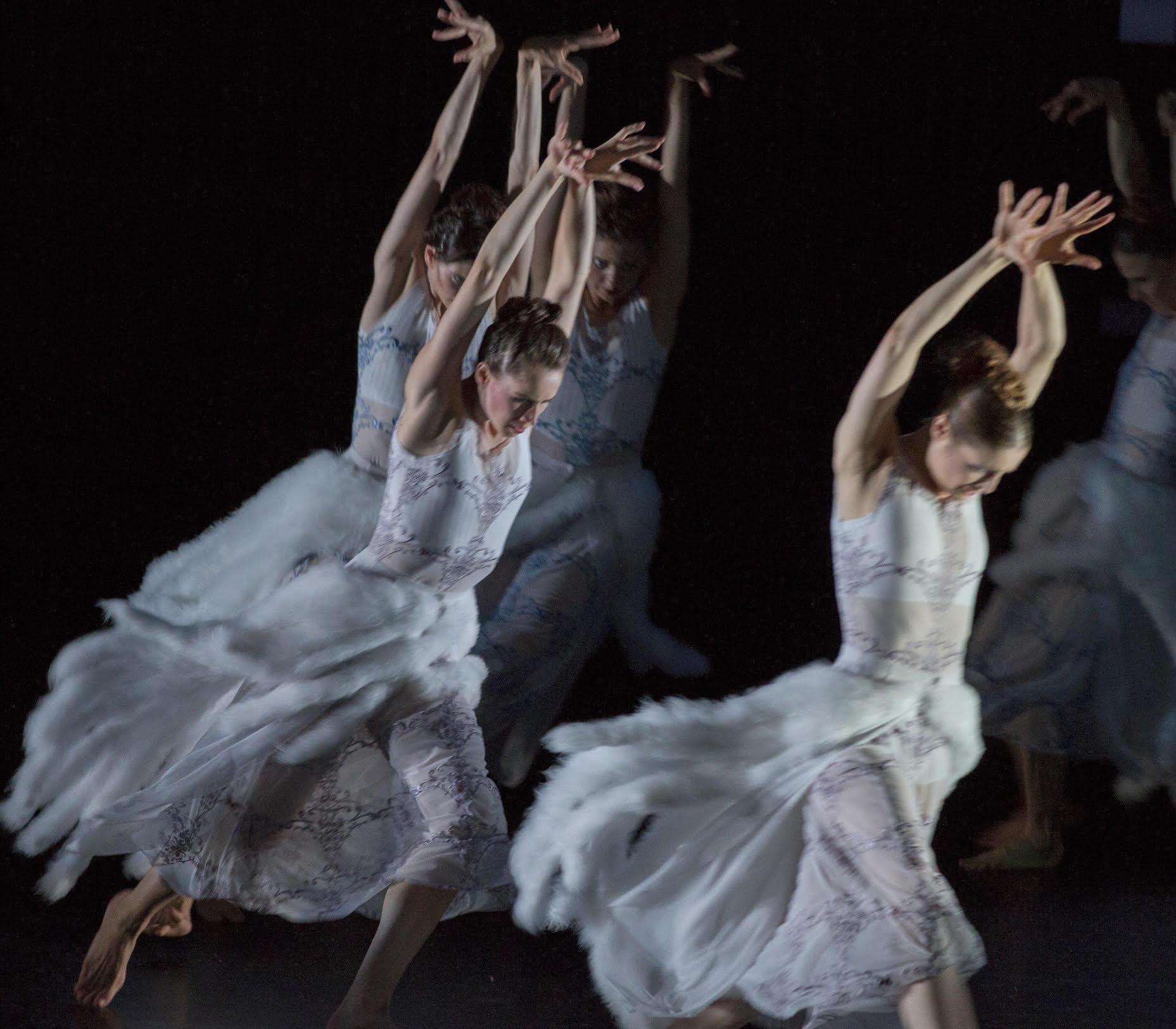 "Ballett am Rhein ""Swan Lake"""