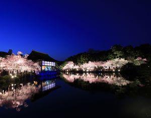 Benishidare Concert in Heianjingu 2020